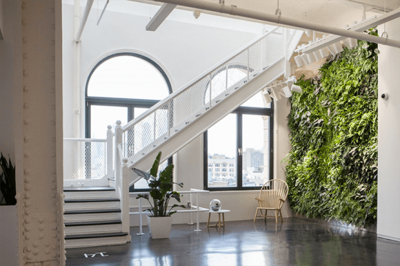 Instagram new office - living wall